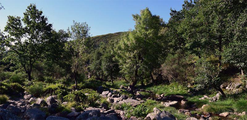 Alvão Naturpark