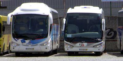 Bus Faro Busbahnhof