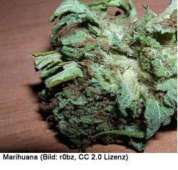 Drogen Portugal