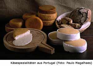 Portugal Käse