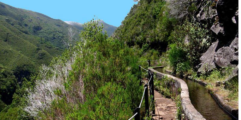 Levada Wandern Madeira