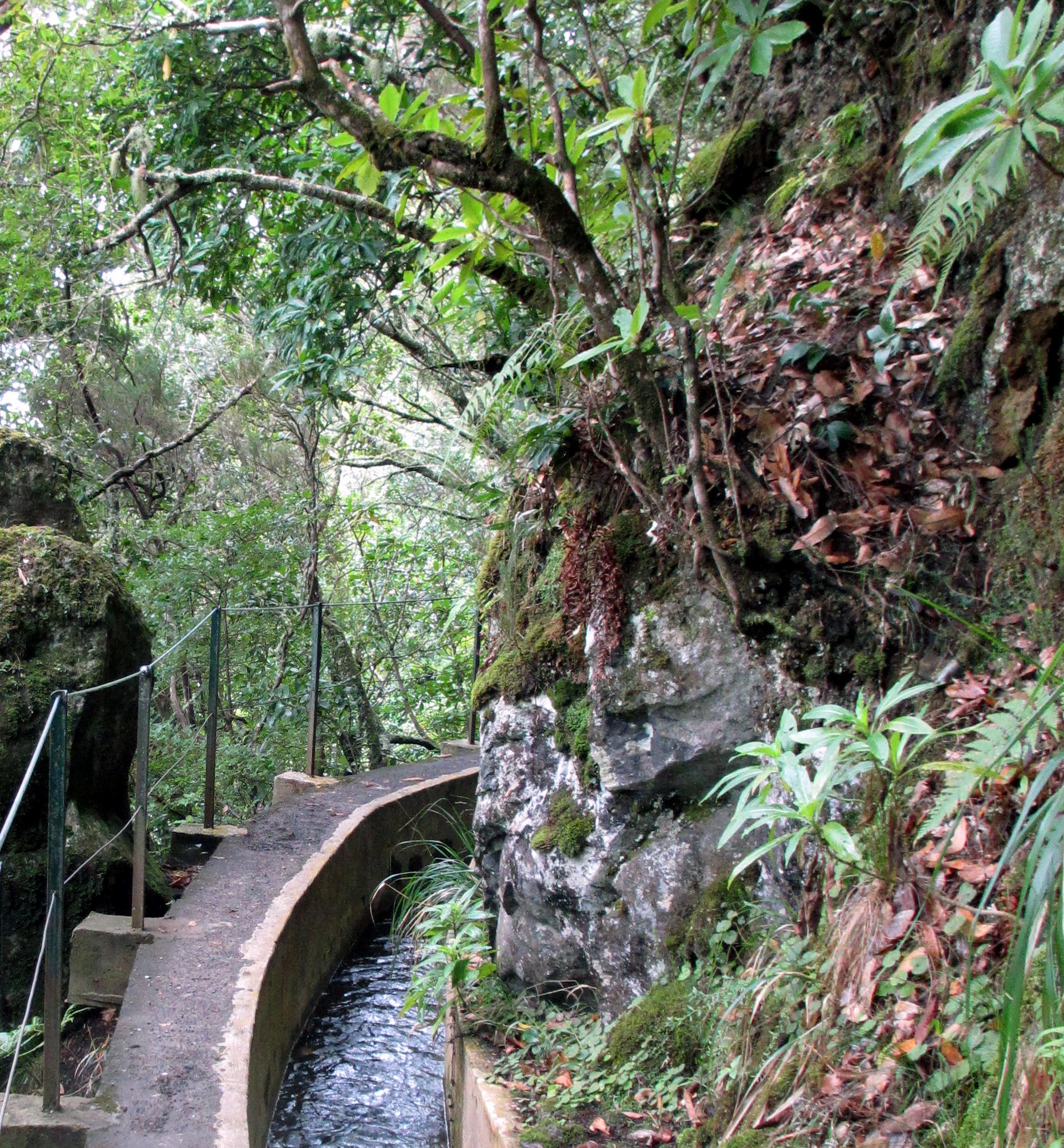 Madeira Wandern Levada