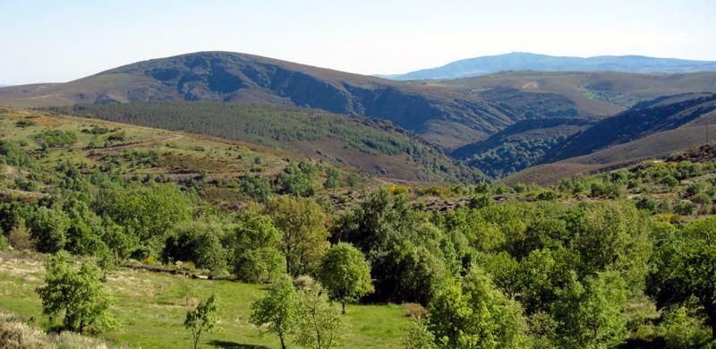 Montesinho Nationalpark Natur