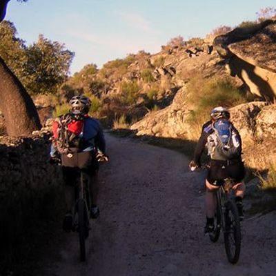 Fahrrad Mountain Bike