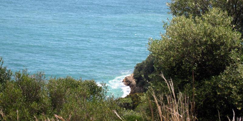 Natur Wander Lissabon