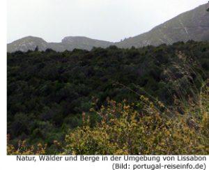 Natur Wander Nationalpark Umgebung Lissabon