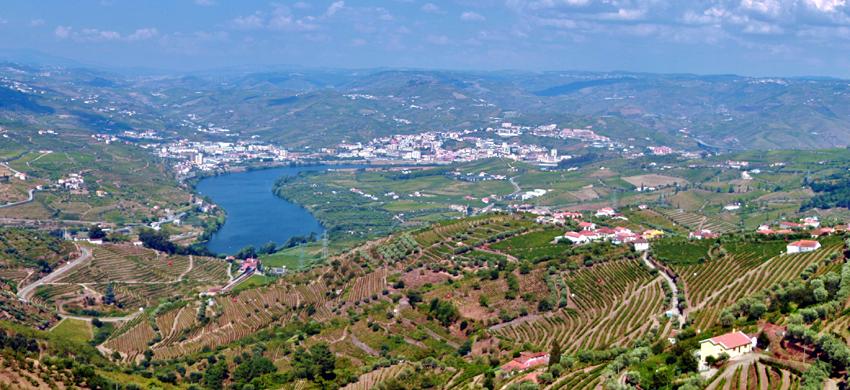 Portugal Essen Trinken Wein