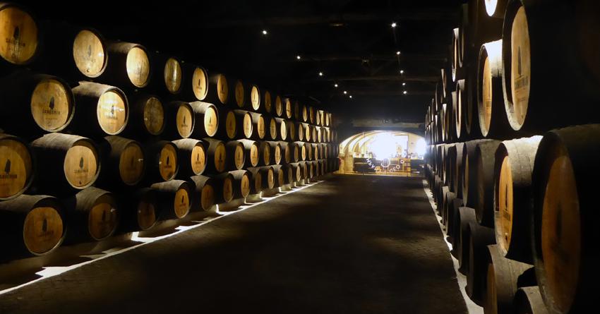 Portwein probieren besichtigen Tour