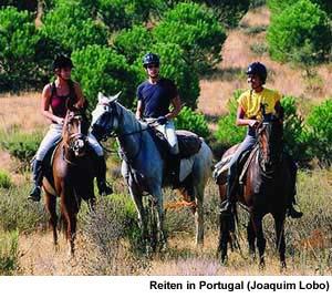 Reiten in Portugal