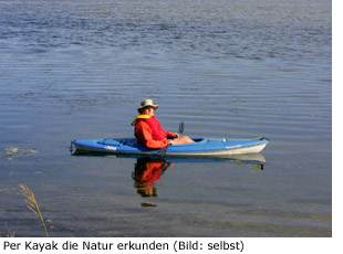 Ria Formosa Kayak